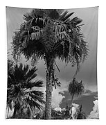 Selby Garden Palms Tapestry