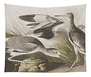Semipalmated Snipe Or Willet Tapestry