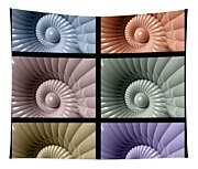Series Of Sea Shells Tapestry