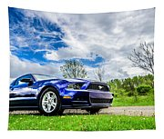Serious Stang Tapestry