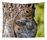 Sexy Squirrel Tapestry
