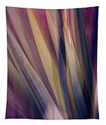 Shade Of Color Tapestry