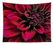 Shades Of Red - Dahlia Tapestry