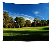 Shadows And Trees Of The Afternoon - Monmouth Battlefield Park Tapestry
