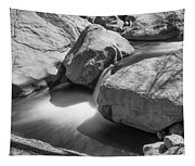 Shadows Of A Creek In Black And White Tapestry