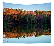 Shadows Of Reflection Tapestry