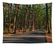 Shadows Road - Ocean County Park Tapestry