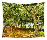 Shady Grove At Wai'anapanapa Tapestry