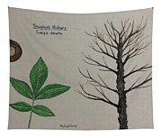 Shagbark Hickory Tree Id Tapestry