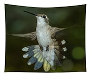 Shake Your Tail Feathers Tapestry