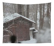 Shed Thru Glass And Snow Tapestry