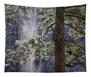 Shedding Snow Tapestry