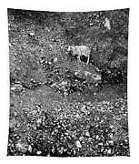 Sheep In Bw Tapestry