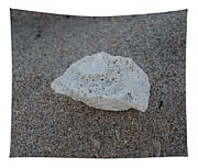 Shell And Sand Tapestry