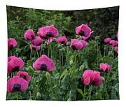 Shell Shaped Poppies Tapestry