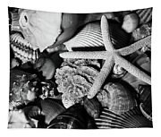 Shells And Starfish In Black And White Tapestry