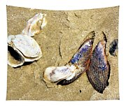 Shells On The Beach Of Jekyll Tapestry