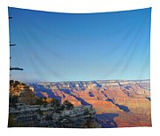 Shifting Perspectives Tapestry