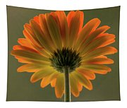 Shine Bright Gerber Daisy Square Tapestry