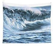 Shiny Wave Tapestry