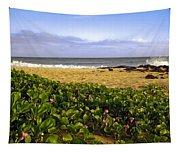Shipwreck Beach Tapestry
