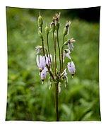 Shooting Star Flower - Wisconsin Tapestry
