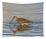 Short-billed Dowitcher Tapestry