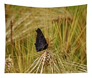 Showing The Dark Side. European Peacock On Barley Tapestry