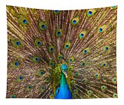 Showing Your Colors Tapestry