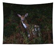 Shy Fallow Deer 4 Tapestry
