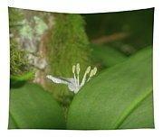 Shy Flower  Tapestry
