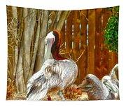 Shy Tapestry