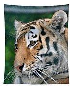 Siberian Tiger Tapestry