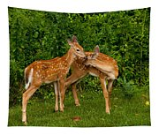 Sibling Love Tapestry