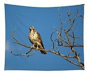 Sideways Glance Tapestry
