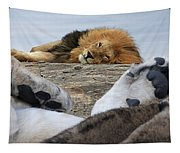 Siesta Time For Lions In Africa Tapestry