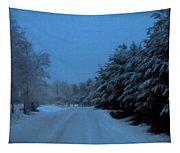 Silent Winter Night  Tapestry