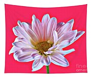 Silky 12618-8 Tapestry