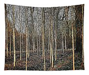 Silver Birch Winter Garden Tapestry