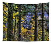 Silver Falls State Park Oregon 2 Tapestry