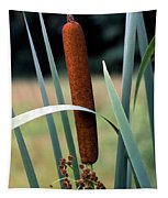 Single Cattail Tapestry