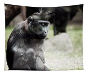 Single Macaque Monkey Sitting Tapestry