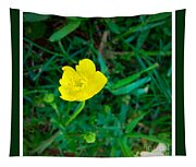 Single Yellow Buttercup Tapestry