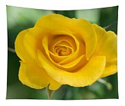 Single Yellow Rose Tapestry