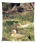 Sitting Ducks Tapestry