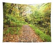 Skylands Trail H Tapestry