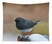 Slate Colored Junco In Snow Tapestry