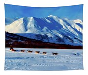 Sledding In Russia Tapestry