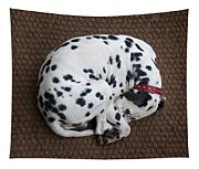 Sleeping Dalmatian II Tapestry