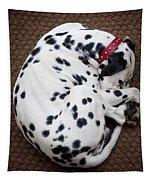 Sleeping Dalmatian Tapestry